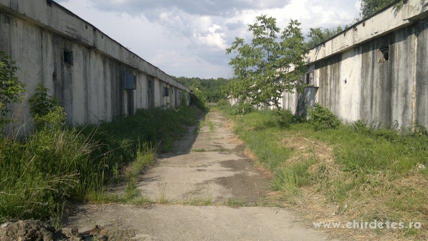 Többféle mezőgazdasági pályázati lehetőségnek megfelelő ingatlan