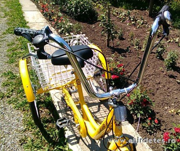 Tricikli felnőtt vadonatúj