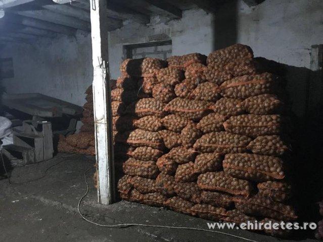 Ültetni való pityoka 25 kg os zsákokban