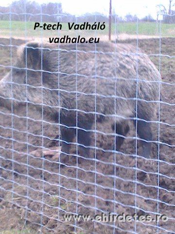 vadháló vadkerítés  vadriasztó huzal drótfonat oszlop tüskésdrót